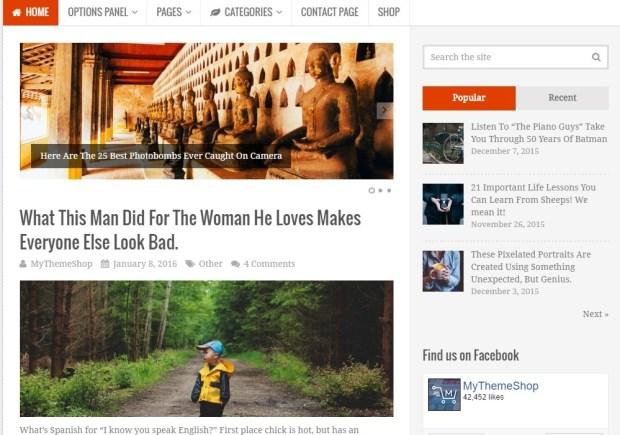 Truepixel WordPress Theme