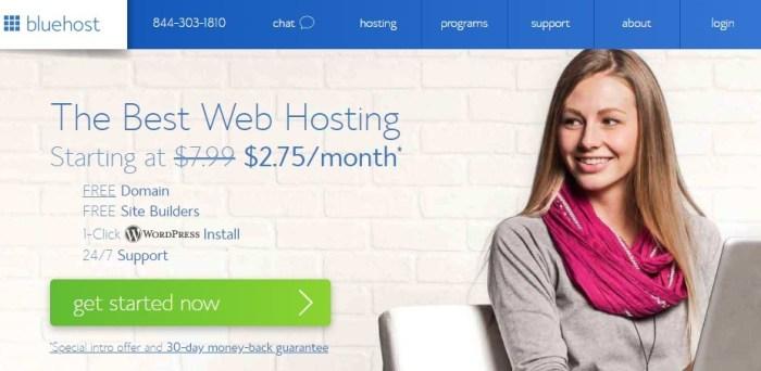 Bluehost - Best WordPress hosting providers