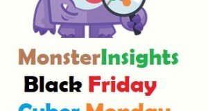 MonsterInsights Black Friday Discount