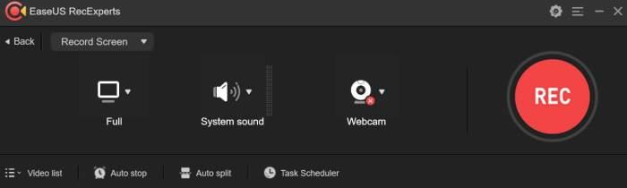 EaseUS RecExperts - Record Screen Option