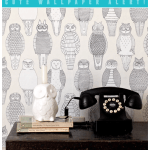 Design trend alert:  Are you an owl lover?