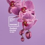 How To Use Pantone's 2014 Color of the Year