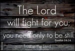You Don't Have To Fight! You Don't Have To Fight!