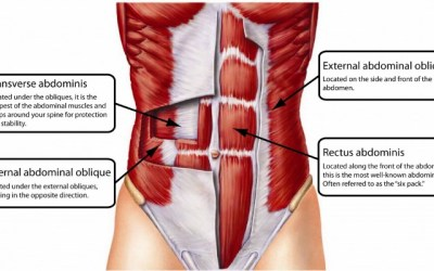 How To Actively Engage Your Core Muscles During Exercise