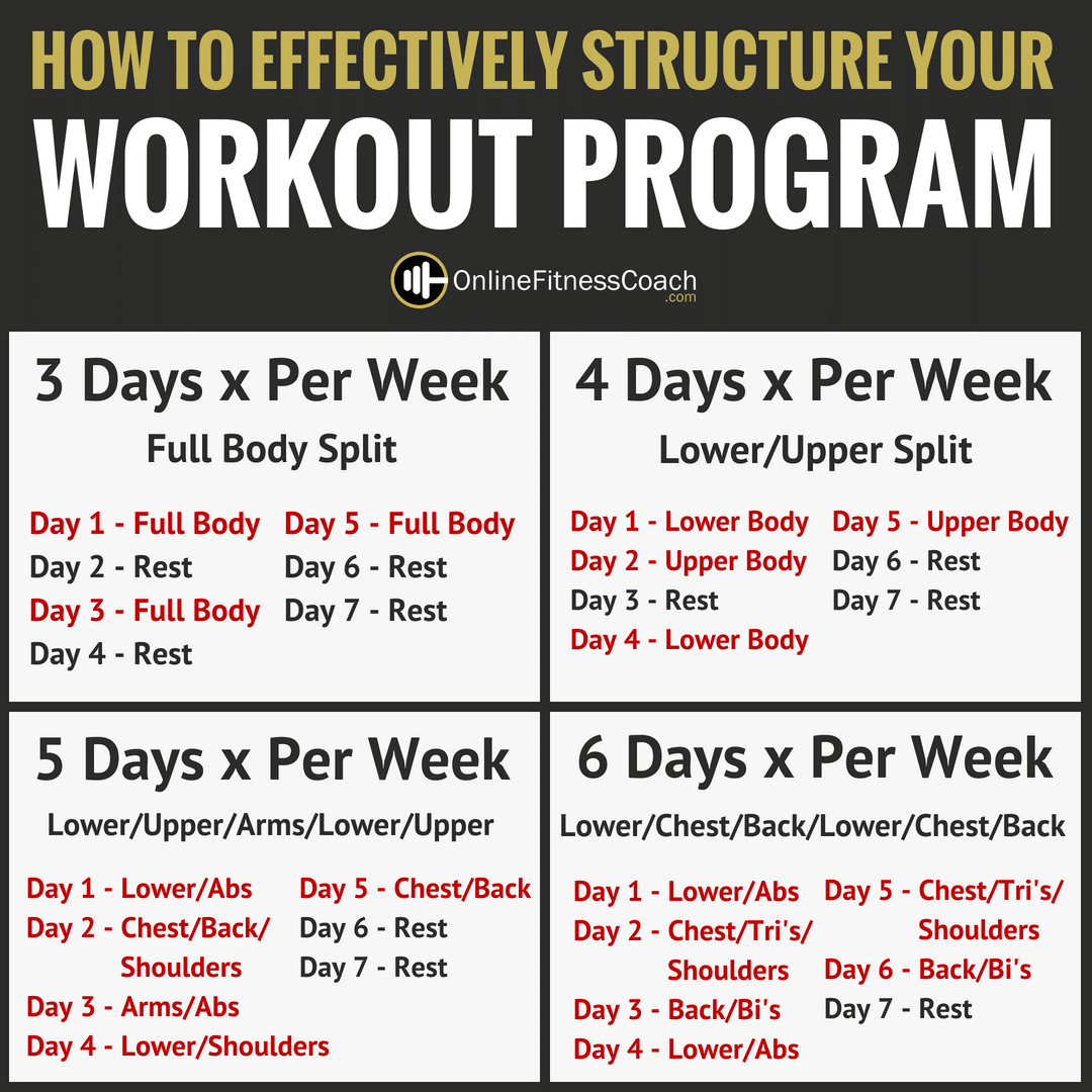 How To Structure Your Workout Program | Online Fitness Coach