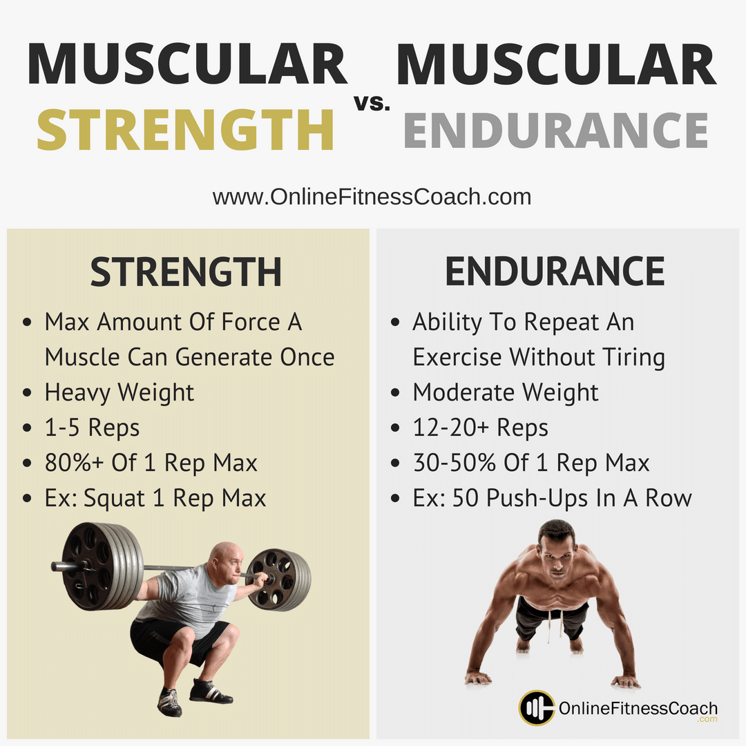 Muscular Strength And Muscular Endurance
