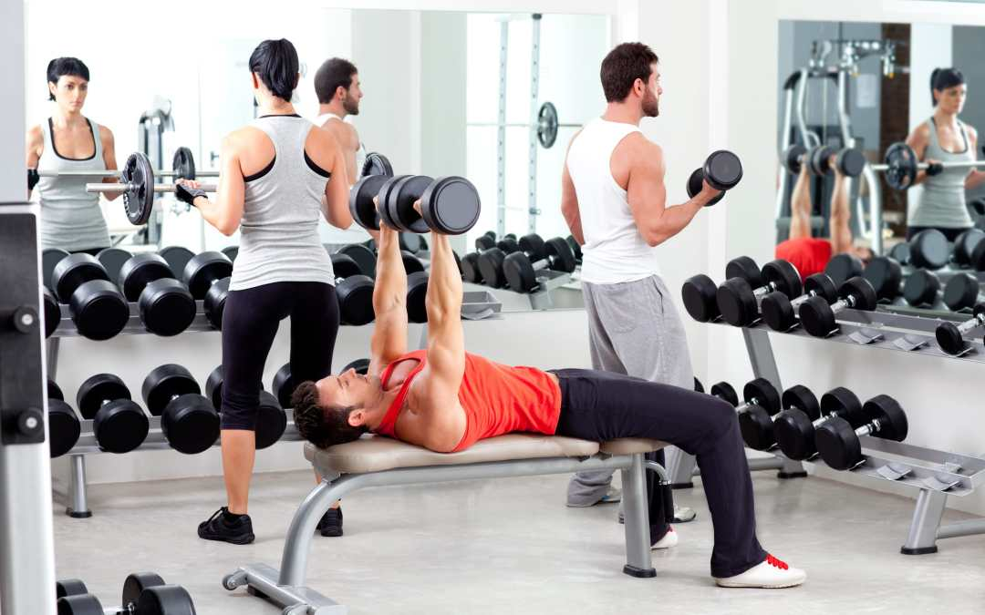 Compound Exercises vs. Isolation Exercises – Which Is Better?