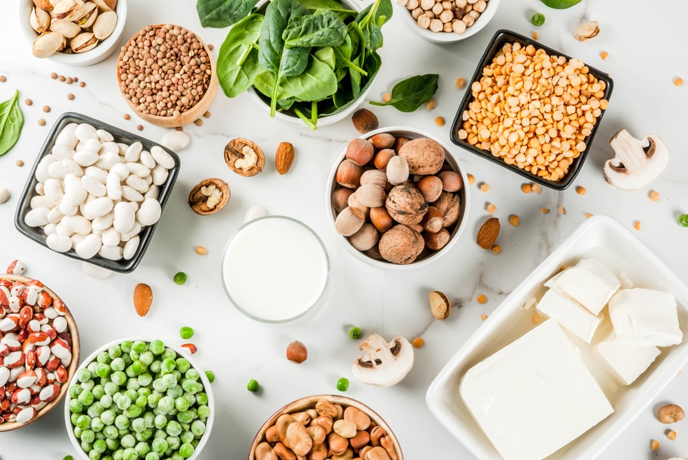 Top Sources Of Vegetarian Protein