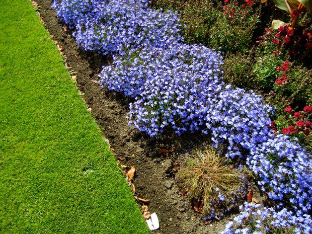 Powerscourt Gardens