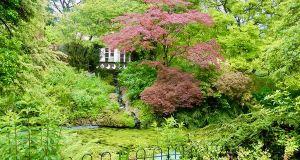 Botanical Gardens at Victoria Park in Bath, UK