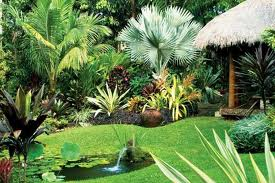 Tropical Garden Ideas Gerbie Plan Tropical Garden Designs