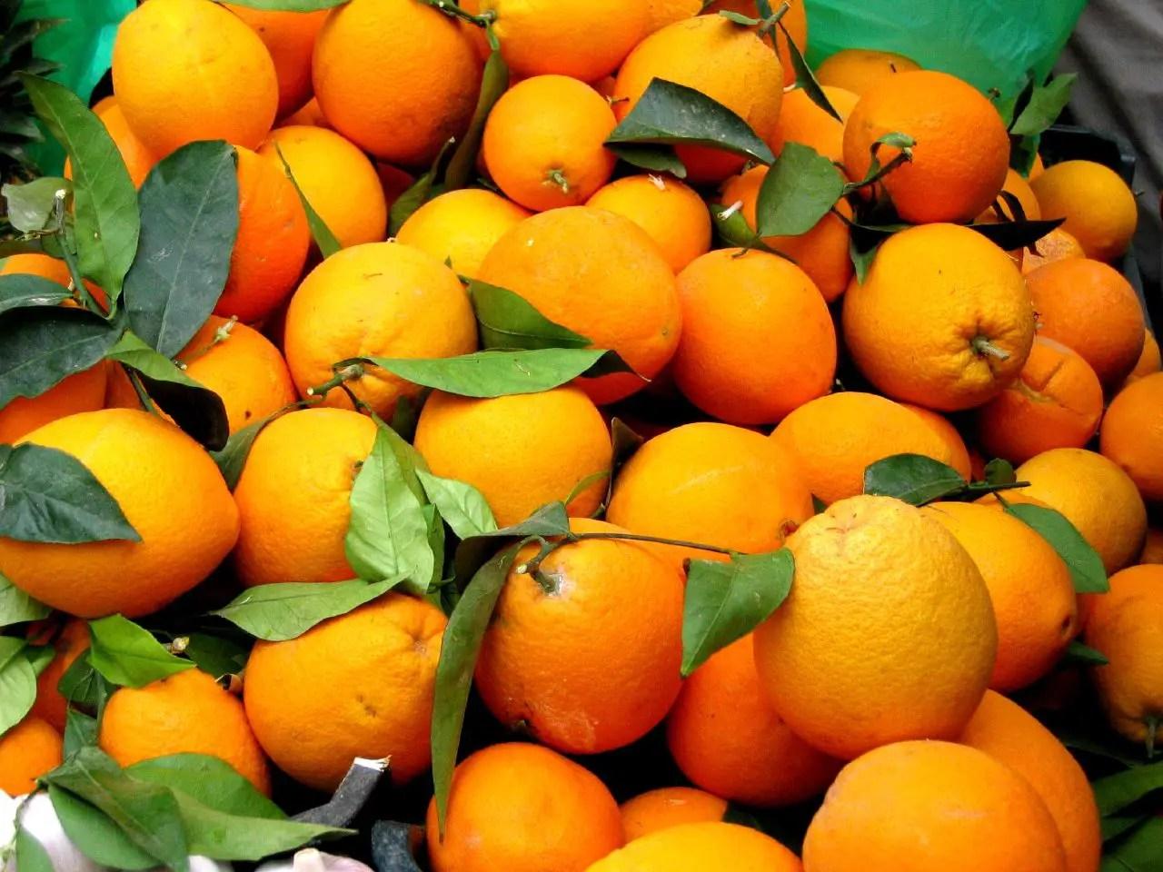 [Isabel Rangel Baron]: Orange
