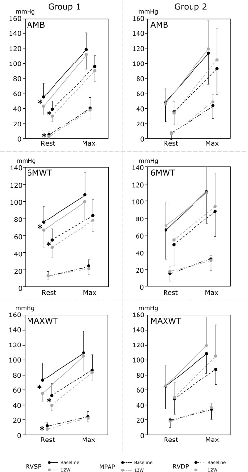 Hemodynamic Ranges During Daily Activities and Exercise