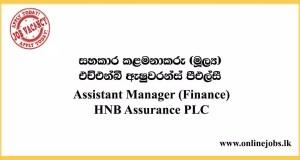 Assistant Manager (Finance) Job at HNB Assurance PLC 2020