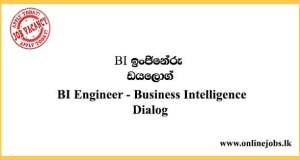 BI Engineer - Business Intelligence Dialog Vacancies 2021