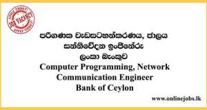 Computer Programming, Network - Communication Engineer Vacancies 2021