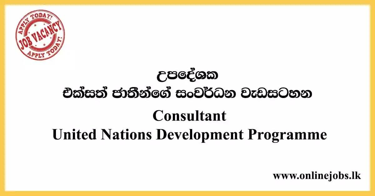 Consultant - United Nations Development Programme Vacancies 2020