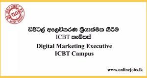 Digital Marketing Executive ICBT Campus Job Vacancies