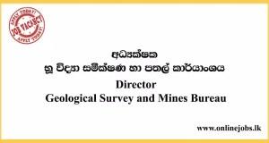 Director - Geological Survey and Mines Bureau Vacancies 2020