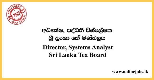 Director-Systems-Analyst
