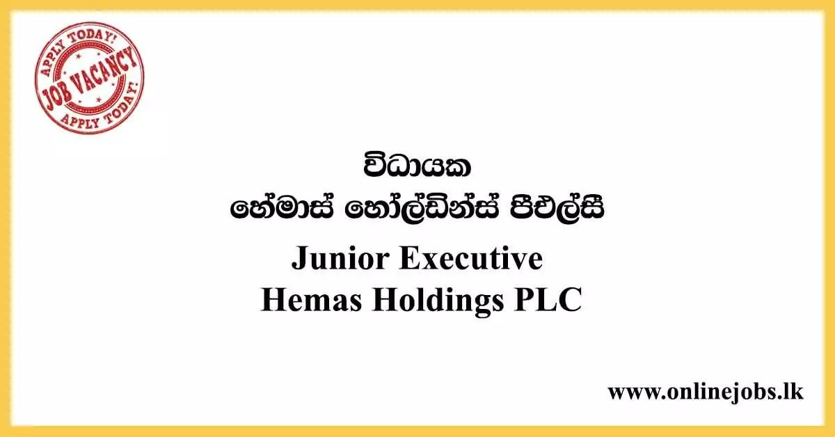 Junior Executive - Hemas Holdings Vacancies 2020