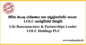 Life Bancassurance & Partnerships Leader - LOLC Vacancies 2020