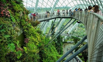 Singapore's attractions enforce social distancing