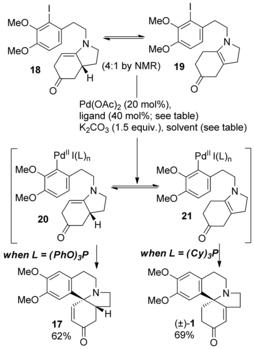 A Short Synthesis of (±)‐3‐Demethoxyerythratidinone by Ligand‐Controlled Selective Heck Cyclization of Equilibrating Enamines - Blackham ...