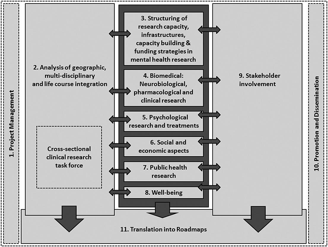 ROAMER: roadmap for mental health research in Europe