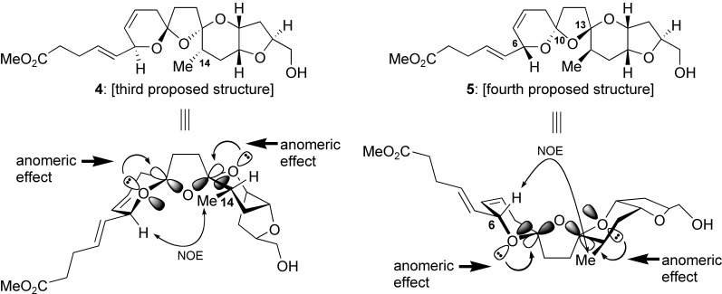 Structural Revision and Total Synthesis of Azaspiracid‐1