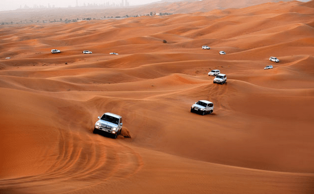 Dubai Desert Conservation Reserve to Catch Some Fun.