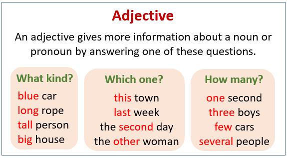 5 Grade Adjectives Exercises Possessive