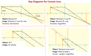 Convex Lenses and Ray Diagrams (examples, solutions