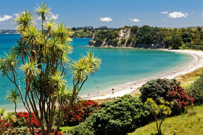 December month to Visit New Zealand