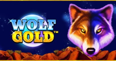 Wolf Treasure Review