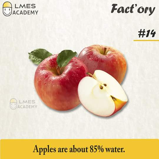 #14 Apples are about 85% water.