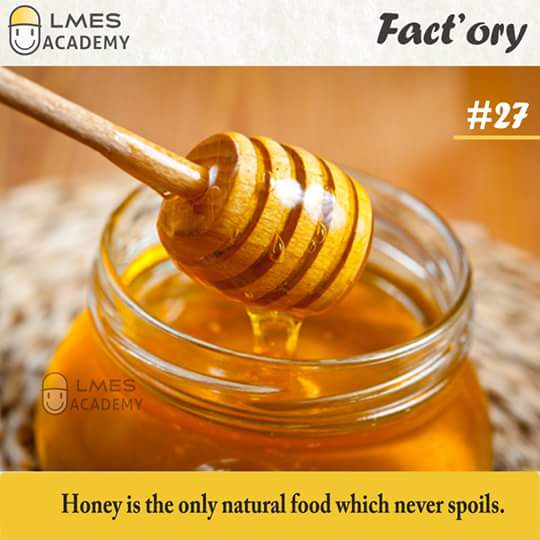 #27 Honey is the only natural food which never spoils