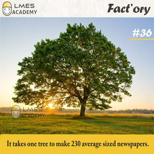 #36 It takes one tree to make 230 average sized newspapers.