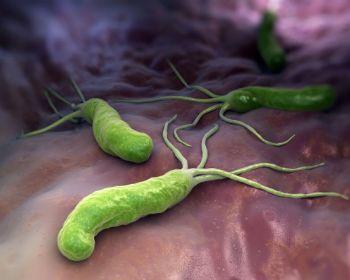 Simptome helicobacter pylori