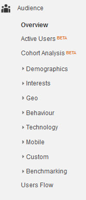 Analytics Audience Menu