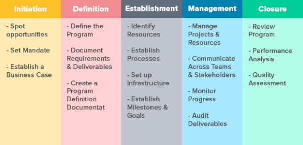 Program Management: Definition, Roles, Responsibilities, and Resources