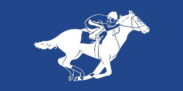 Paarden Wedden