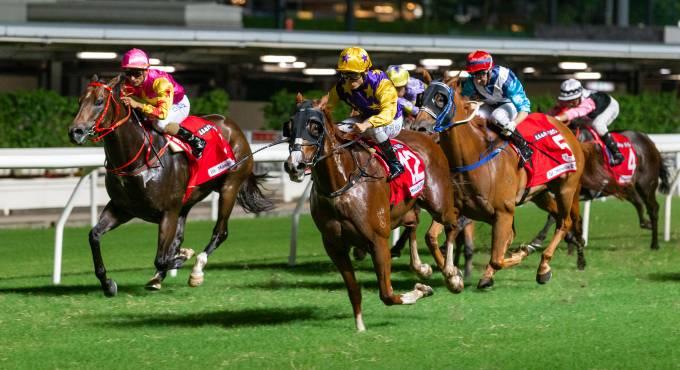 Each Way betting paarden