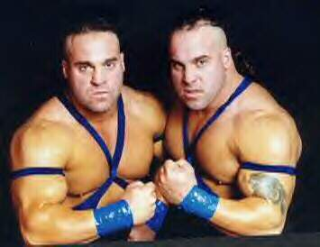 Image result for wrestling twins