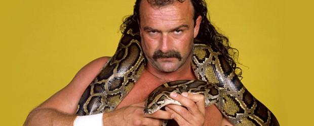 Jake Roberts Online World Of Wrestling