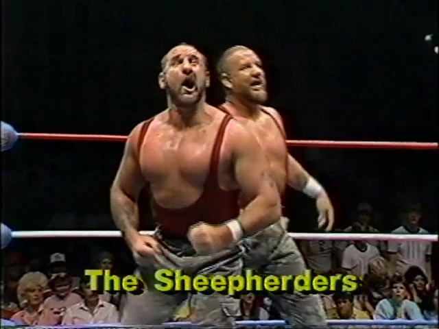 Image result for THE SHEEPHERDERS