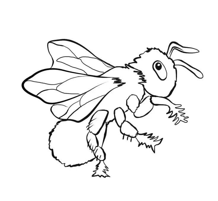 palo, Author at Free coloring pages printable for kids and