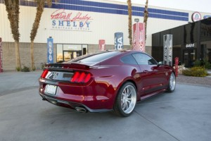 Ford Shelby 2