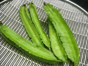 Winged Bean Asparagus Pea