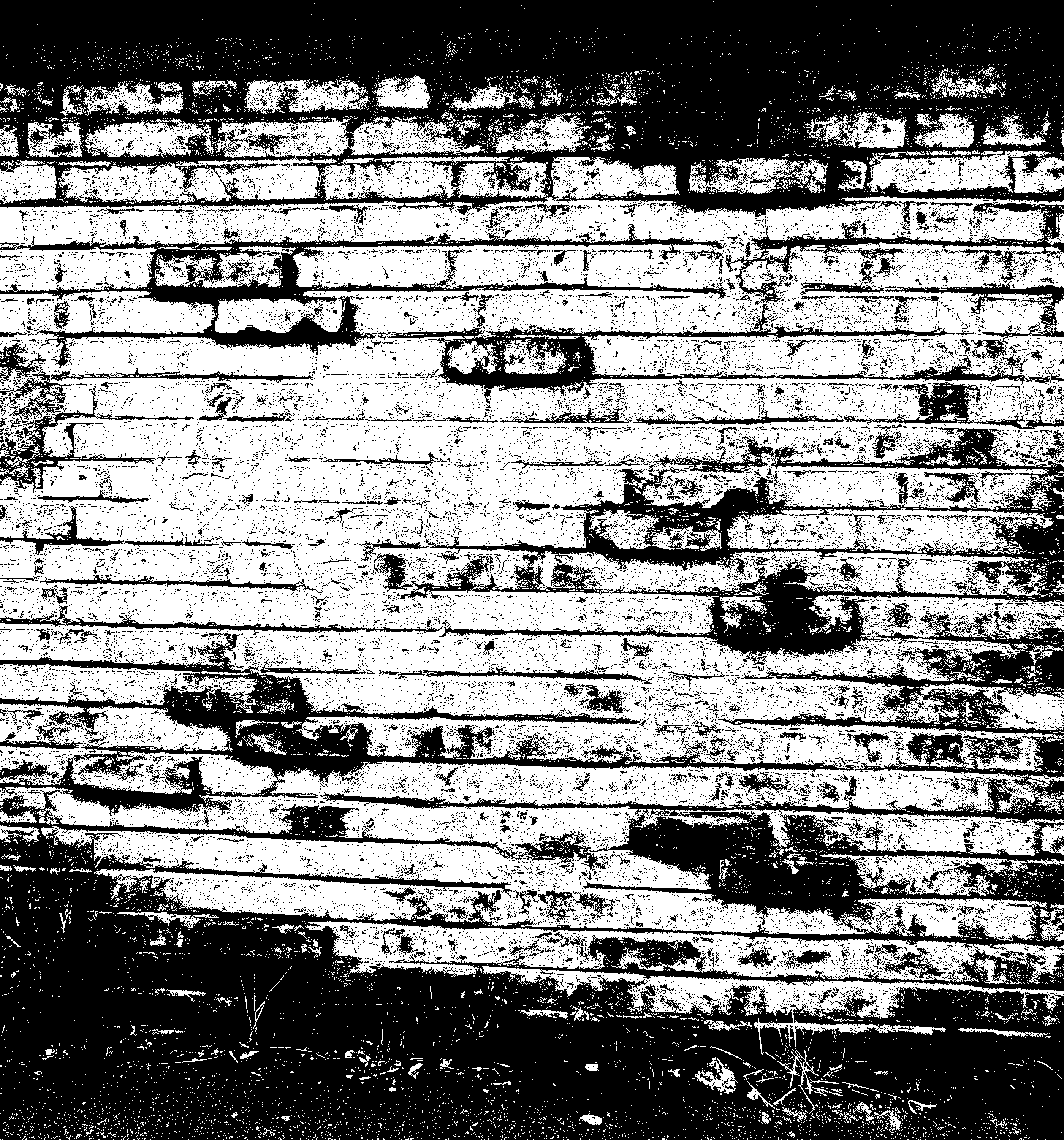 Brick Wall in Black and White Textures (PNG)